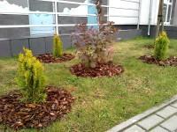 zieleń dla osiedli środa wielkopolska
