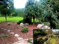 Września ogród przy kamienicy