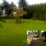 Ogród pod Środą Wielkopolską, odnowienie ogrodu