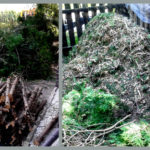 ścinanie krzewów