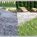 Trawnik z rolki Środa Wielkopolska