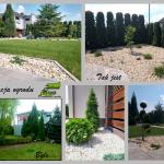 Renowacja ogrodu - zmiana stylu